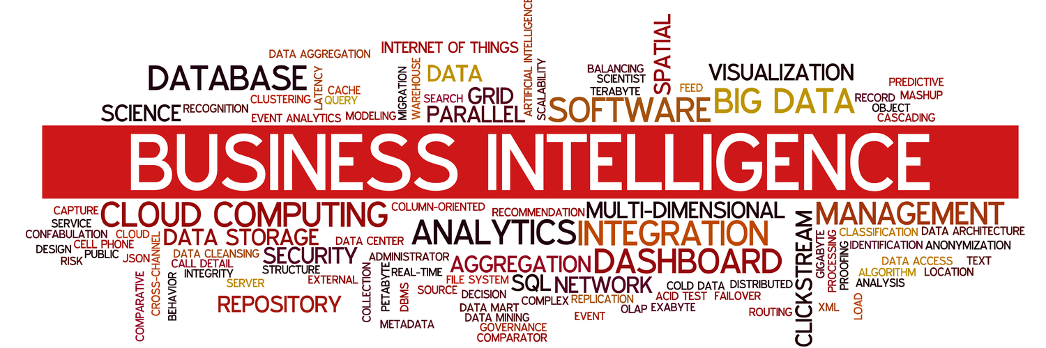 what is business intelligence services
